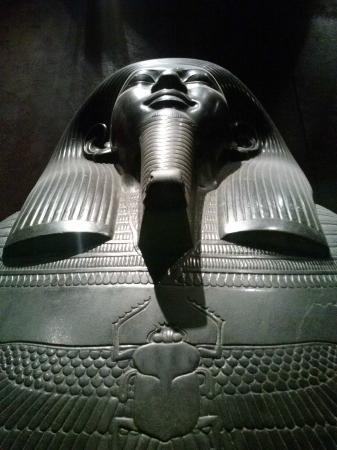 ulisse i tesori del museo egizio di torino