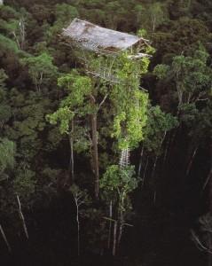 case_sugli_alberi_korowai_2